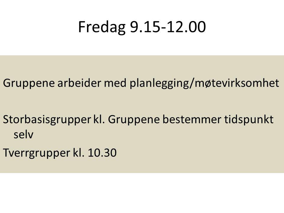 Fredag 9.15-12.00 Gruppene arbeider med planlegging/møtevirksomhet Storbasisgrupper kl. Gruppene bestemmer tidspunkt selv Tverrgrupper kl. 10.30