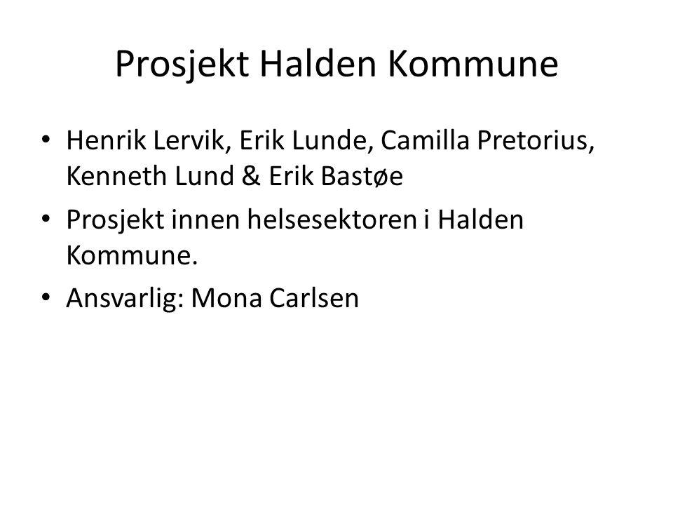 Prosjekt Halden Kommune Henrik Lervik, Erik Lunde, Camilla Pretorius, Kenneth Lund & Erik Bastøe Prosjekt innen helsesektoren i Halden Kommune.