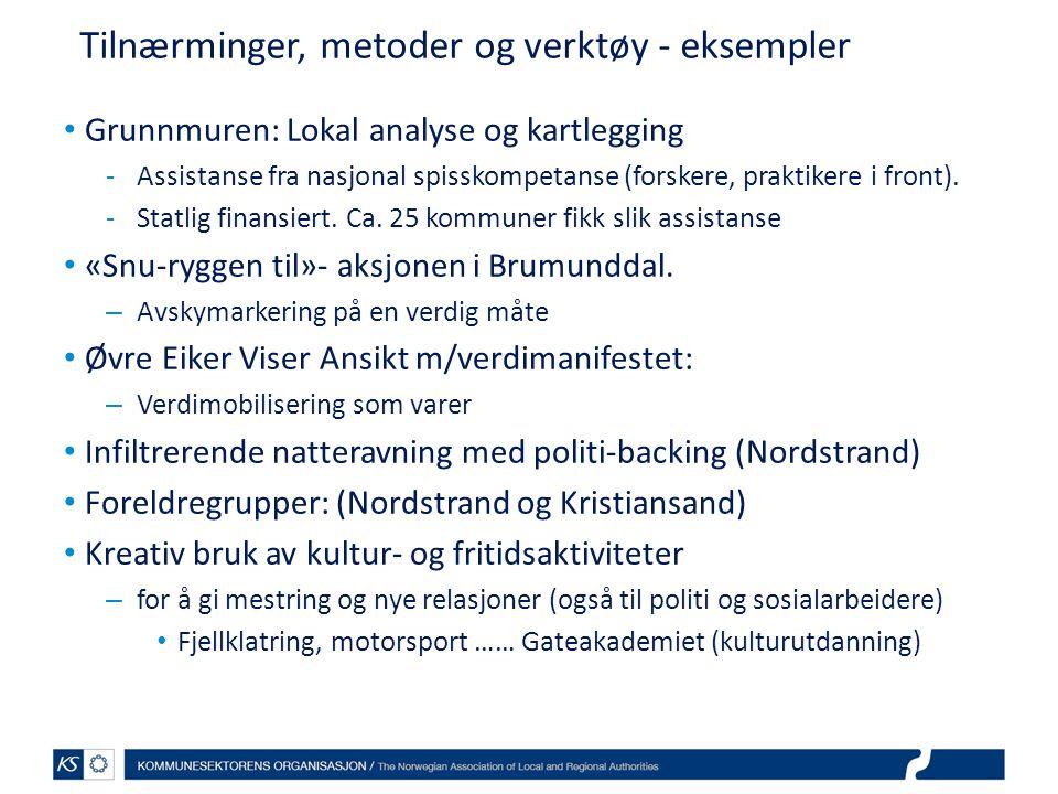 Tilnærminger, metoder og verktøy - eksempler Grunnmuren: Lokal analyse og kartlegging -Assistanse fra nasjonal spisskompetanse (forskere, praktikere i