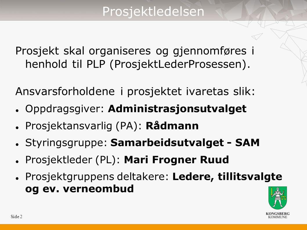 Side 2 Prosjektledelsen Prosjekt skal organiseres og gjennomføres i henhold til PLP (ProsjektLederProsessen).