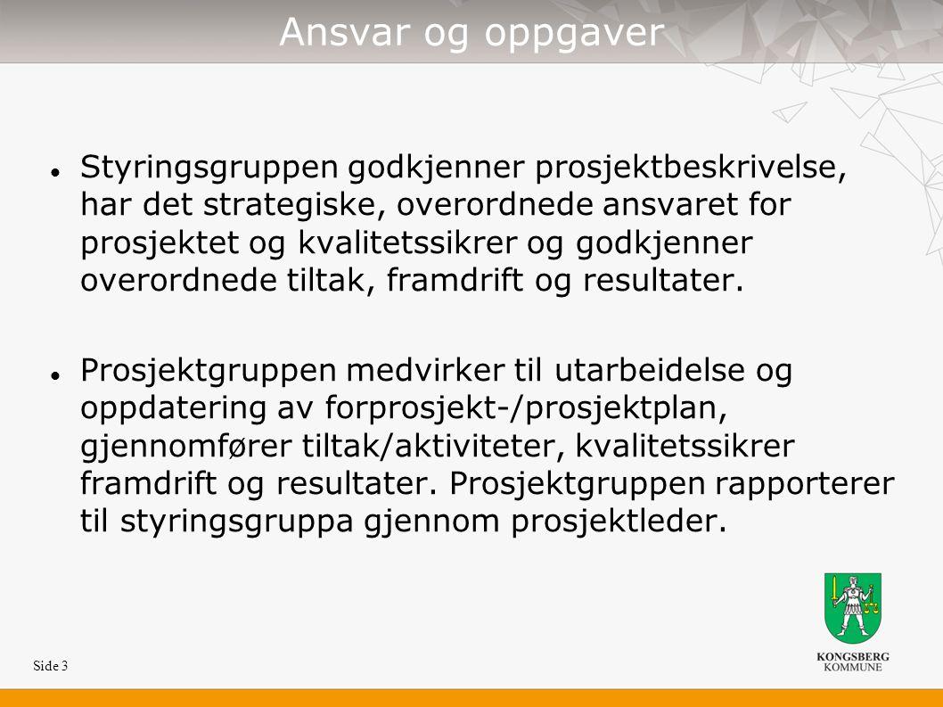 Side 3 Ansvar og oppgaver Styringsgruppen godkjenner prosjektbeskrivelse, har det strategiske, overordnede ansvaret for prosjektet og kvalitetssikrer og godkjenner overordnede tiltak, framdrift og resultater.