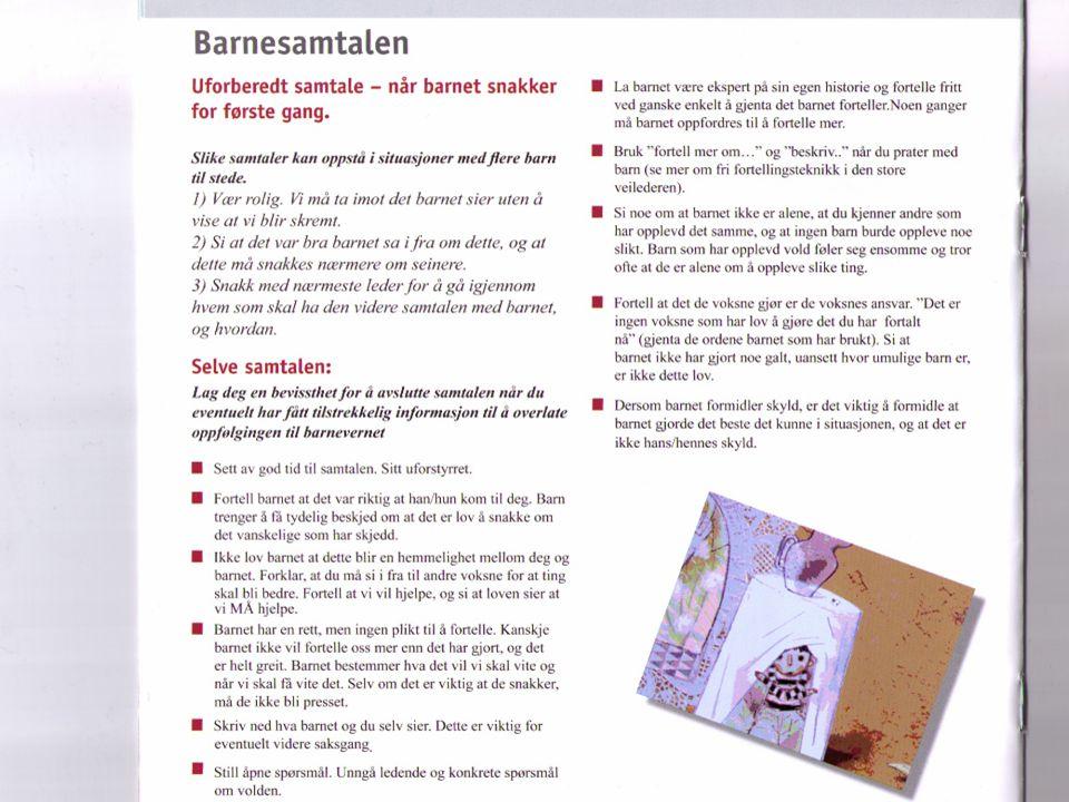 4. og 5. desember 2008Nordisk konferanse om tvangsekteskap og botilbud13
