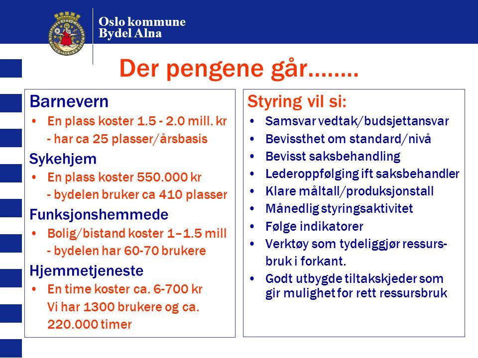 Oslo kommune Bydel Alna Der pengene går…….. Barnevern En plass koster 1.5 - 2.0 mill. kr - har ca 25 plasser/årsbasis Sykehjem En plass koster 550.000