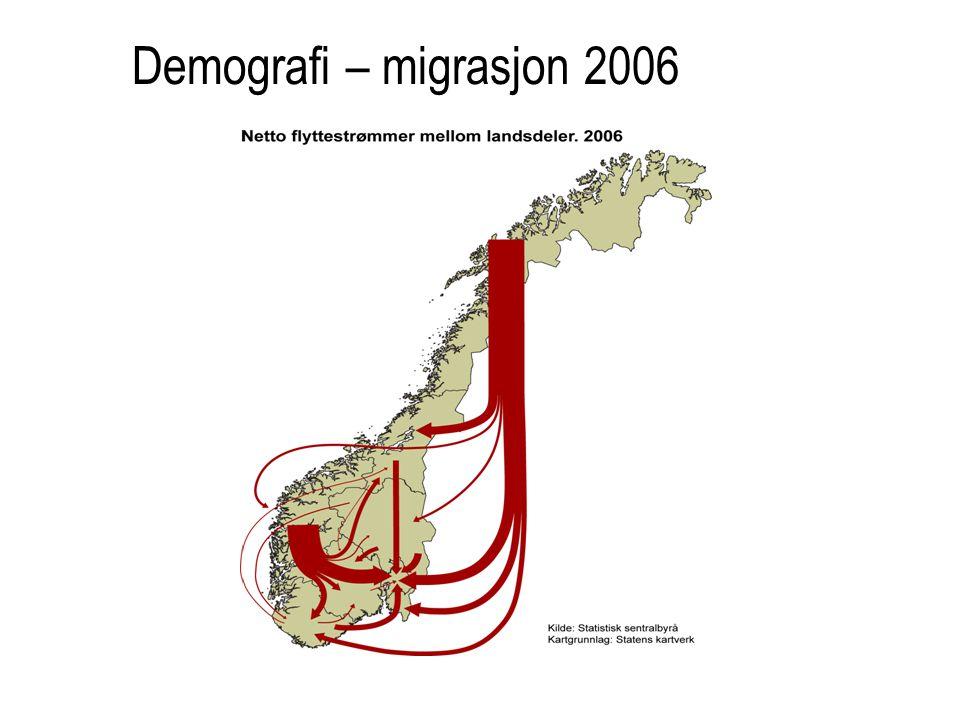 Demografi – migrasjon 2006