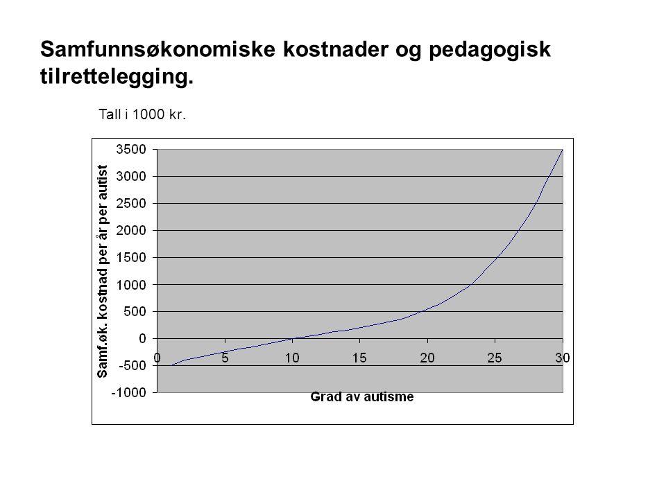 Samfunnsøkonomiske kostnader og pedagogisk tilrettelegging. Tall i 1000 kr.
