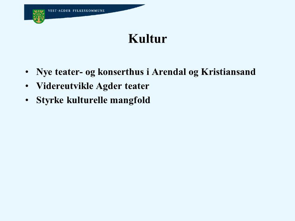 Kultur Nye teater- og konserthus i Arendal og Kristiansand Videreutvikle Agder teater Styrke kulturelle mangfold