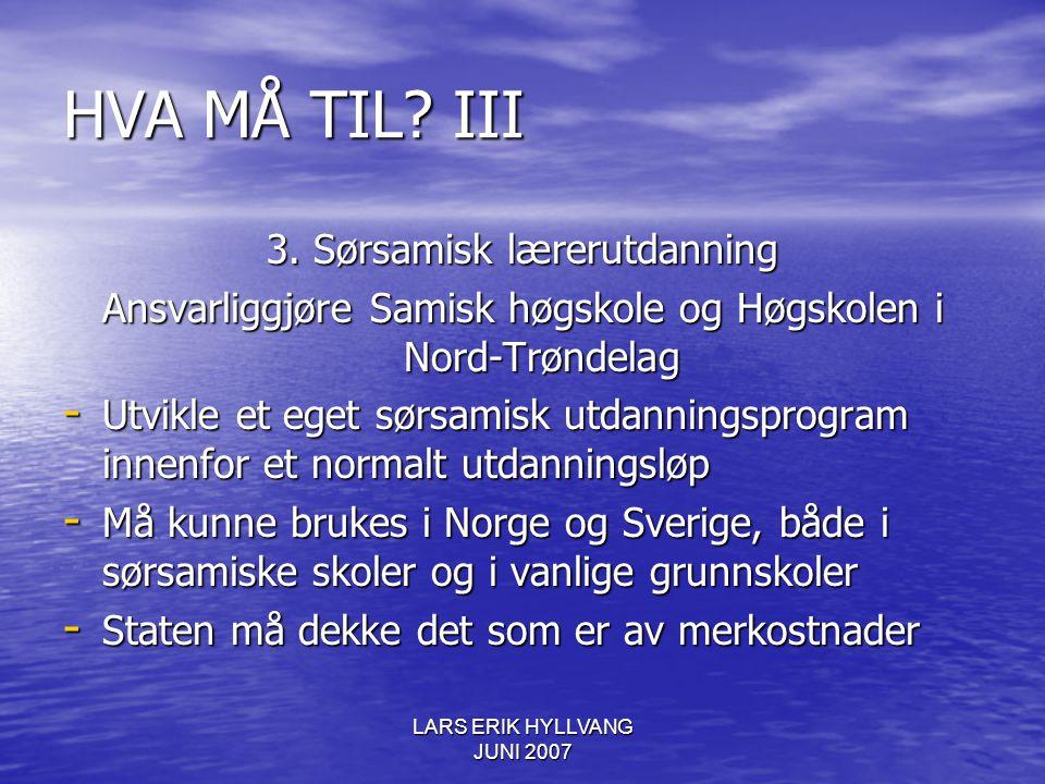 LARS ERIK HYLLVANG JUNI 2007 HVA MÅ TIL? III 3. Sørsamisk lærerutdanning Ansvarliggjøre Samisk høgskole og Høgskolen i Nord-Trøndelag - Utvikle et ege