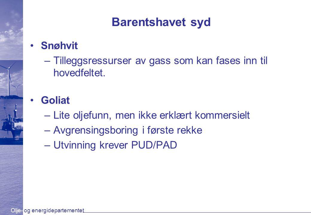 Olje- og energidepartementet Barentshavet syd Snøhvit –Tilleggsressurser av gass som kan fases inn til hovedfeltet. Goliat –Lite oljefunn, men ikke er