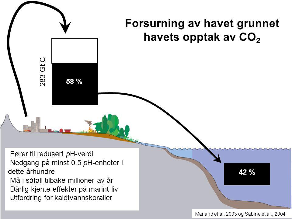 283 Gt C 58 % 42 % Marland et al, 2003 og Sabine et al., 2004 Forsurning av havet grunnet havets opptak av CO 2 Fører til redusert pH-verdi Nedgang på