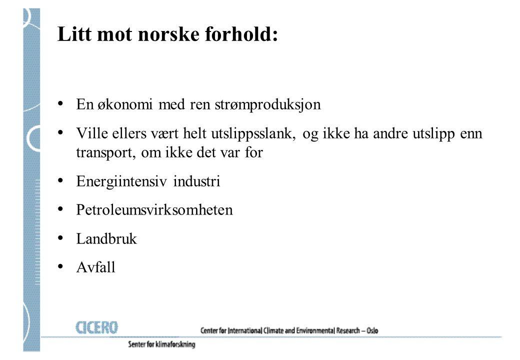 Litt mot norske forhold: En økonomi med ren strømproduksjon Ville ellers vært helt utslippsslank, og ikke ha andre utslipp enn transport, om ikke det