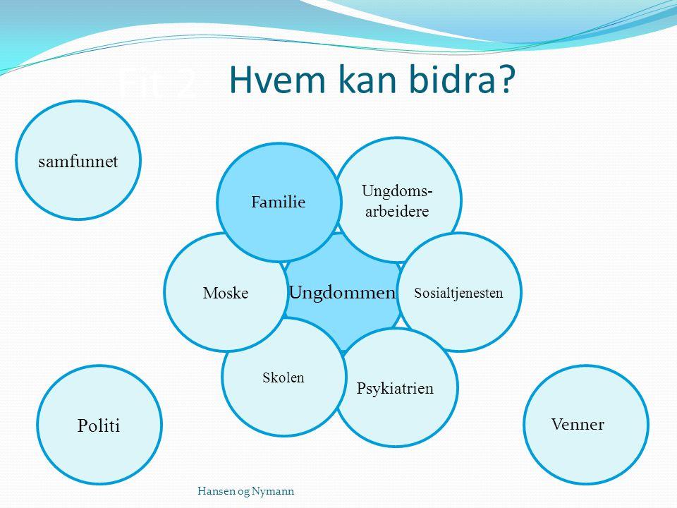 Ungdommen Ungdoms- arbeidere Sosialtjenesten Psykiatrien Skolen Moske Familie Venner Politi samfunnet Fit 2 Hvem kan bidra.