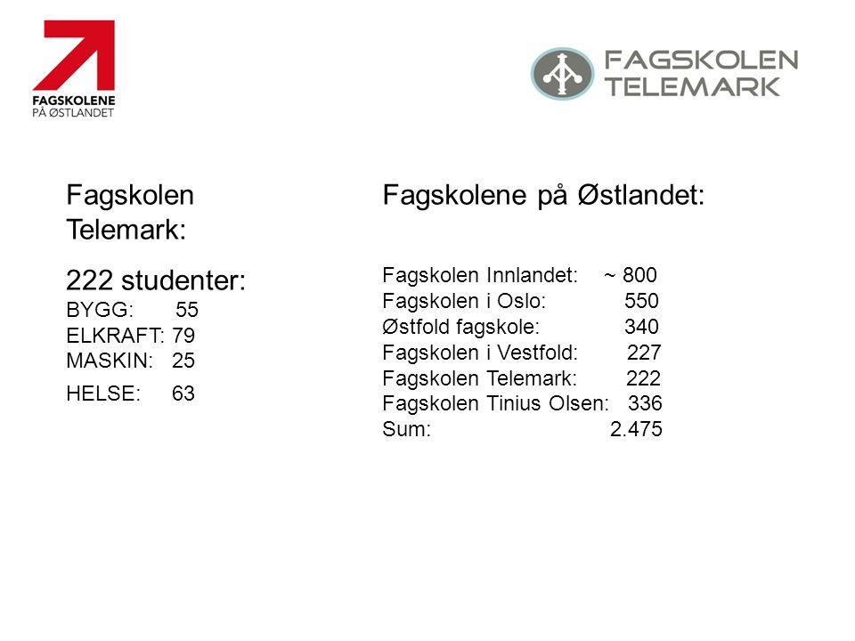 Fagskolen Telemark: 222 studenter: BYGG: 55 ELKRAFT: 79 MASKIN: 25 HELSE: 63 Fagskolene på Østlandet: Fagskolen Innlandet: ~ 800 Fagskolen i Oslo: 550 Østfold fagskole: 340 Fagskolen i Vestfold: 227 Fagskolen Telemark: 222 Fagskolen Tinius Olsen: 336 Sum: 2.475