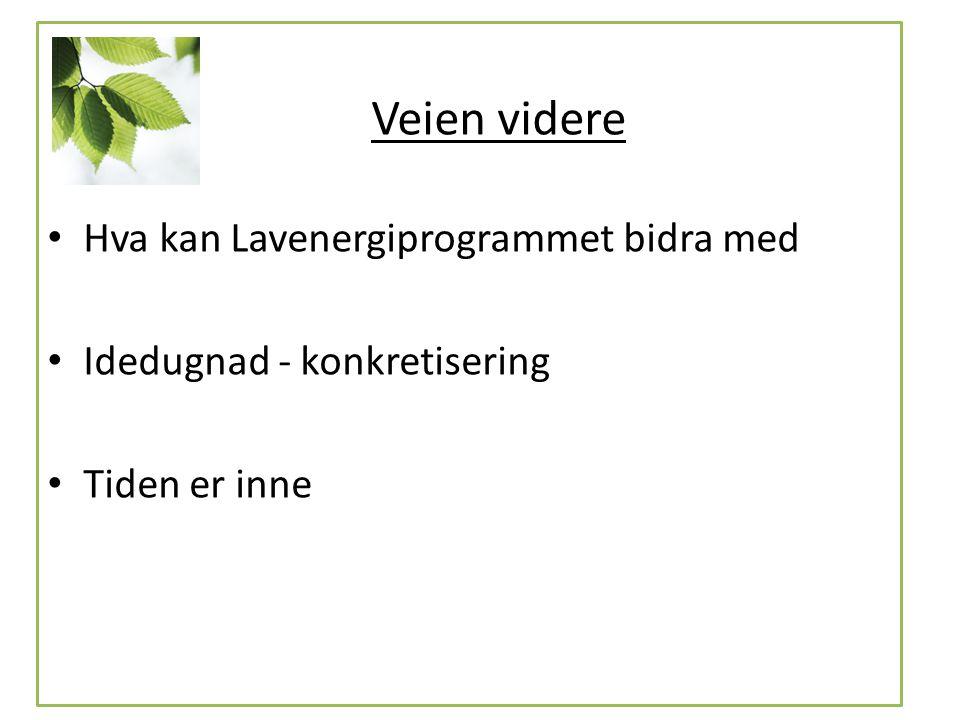 Hva kan Lavenergiprogrammet bidra med Idedugnad - konkretisering Tiden er inne Veien videre