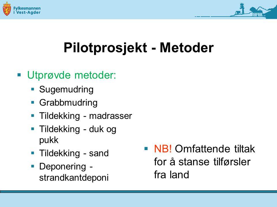 Pilotprosjekt - Metoder  Utprøvde metoder:  Sugemudring  Grabbmudring  Tildekking - madrasser  Tildekking - duk og pukk  Tildekking - sand  Deponering - strandkantdeponi  NB.