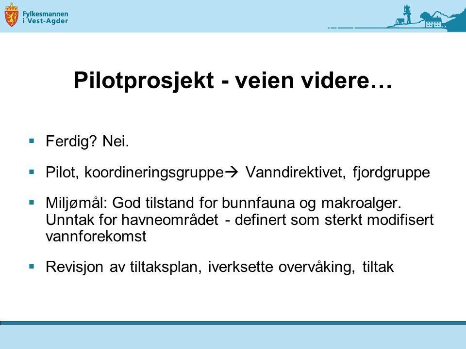 Pilotprosjekt - veien videre…  Ferdig.Nei.