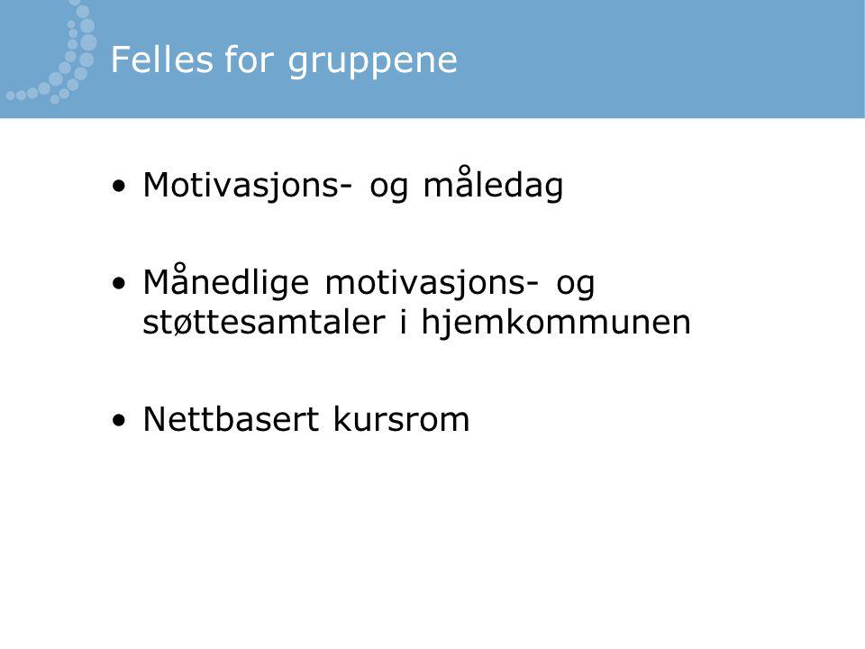Felles for gruppene Motivasjons- og måledag Månedlige motivasjons- og støttesamtaler i hjemkommunen Nettbasert kursrom