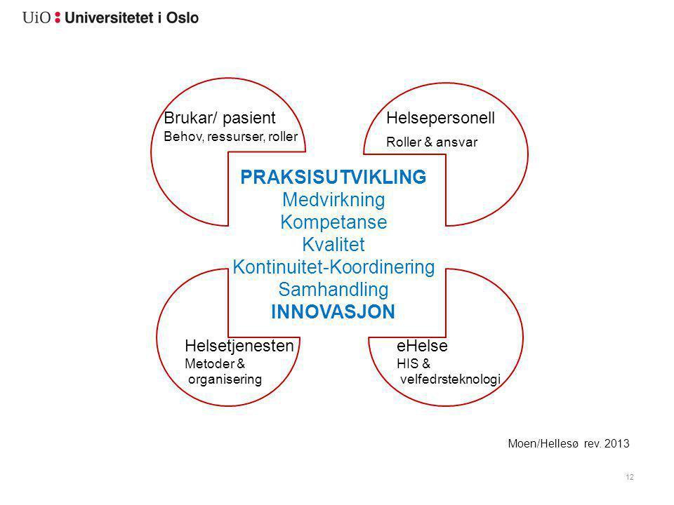 12 PRAKSISUTVIKLING Medvirkning Kompetanse Kvalitet Kontinuitet-Koordinering Samhandling INNOVASJON Moen/Hellesø rev. 2013 Brukar/ pasientHelsepersone
