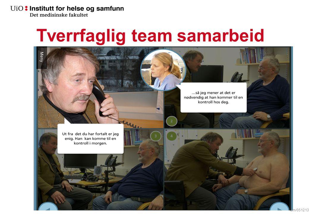 Tverrfaglig team samarbeid am/051213