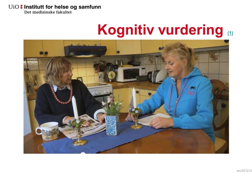 Kognitiv vurdering (1) (1) am/051213
