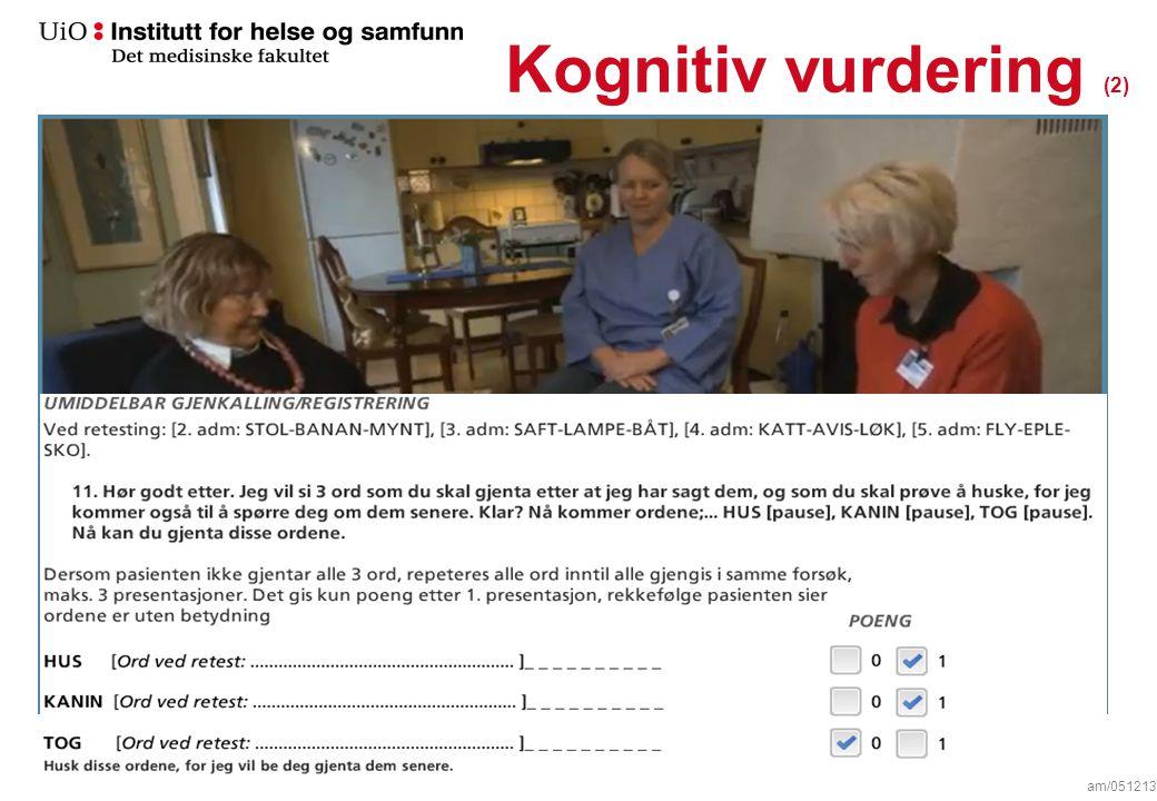 Kognitiv vurdering (2) am/051213