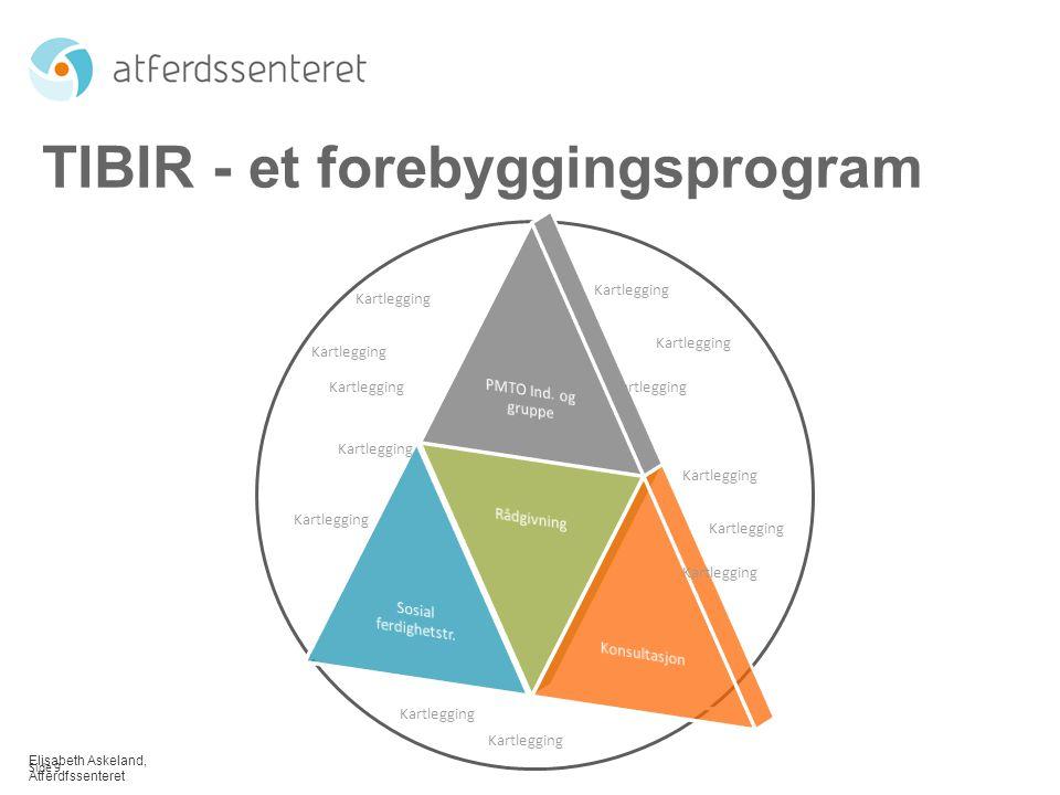 Elisabeth Askeland, Atferdfssenteret TIBIR - et forebyggingsprogram Kartlegging Side 9 Kartlegging