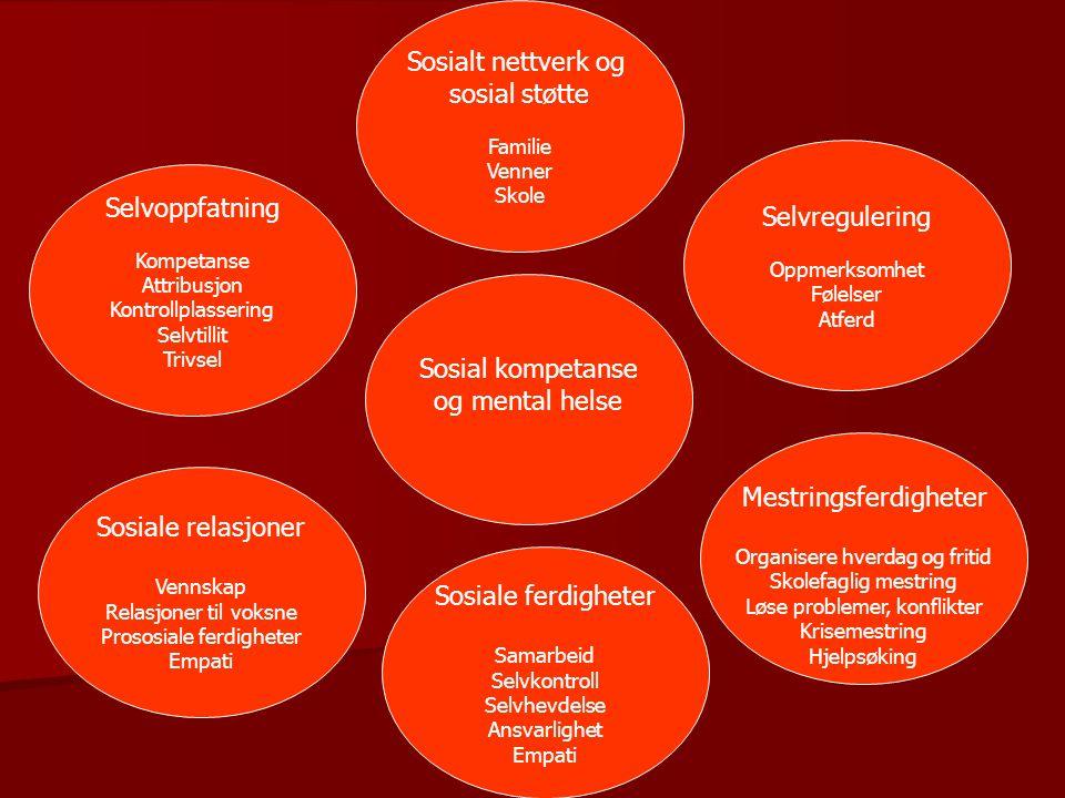 Sosiale ferdigheter Samarbeid Selvkontroll Selvhevdelse Ansvarlighet Empati Sosial kompetanse og mental helse Mestringsferdigheter Organisere hverdag