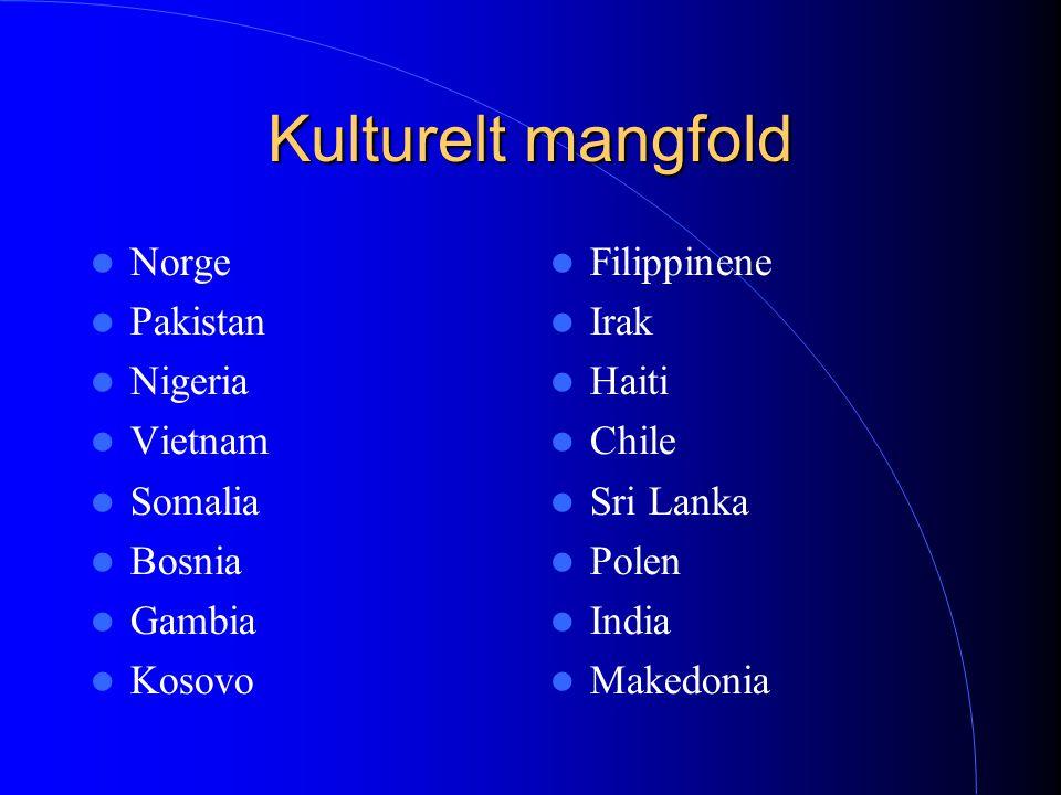 Kulturelt mangfold Norge Pakistan Nigeria Vietnam Somalia Bosnia Gambia Kosovo Filippinene Irak Haiti Chile Sri Lanka Polen India Makedonia