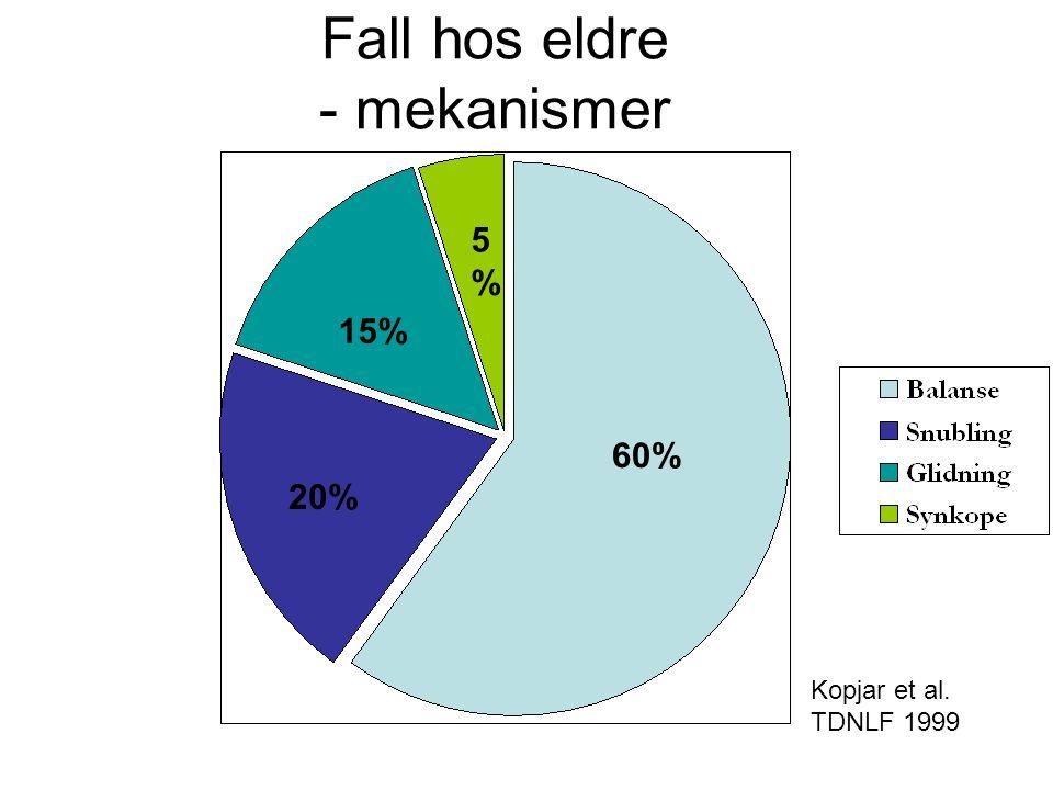 Fall hos eldre - mekanismer 60% 20% 15% 5%5% Kopjar et al. TDNLF 1999