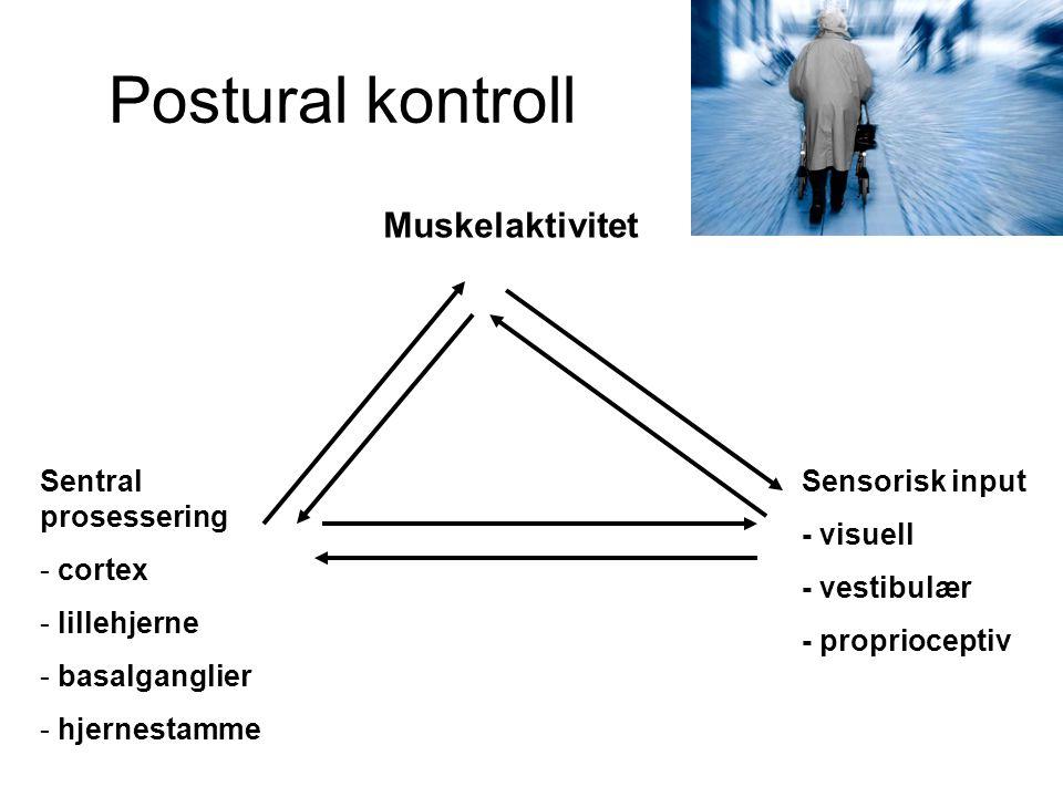 Postural kontroll Muskelaktivitet Sensorisk input - visuell - vestibulær - proprioceptiv Sentral prosessering - cortex - lillehjerne - basalganglier - hjernestamme