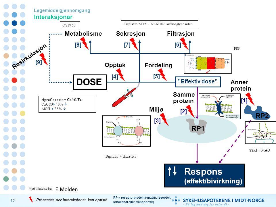 12 DOSE Legemiddelgjennomgang Interaksjonar RP1 Respons (effekt/bivirkning) Miljø RP = reseptorprotein (enzym, reseptor, ionekanal eller transportør)