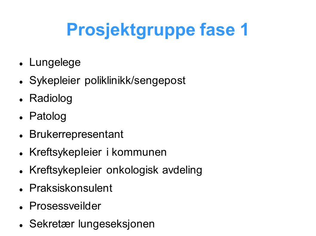 Prosjektgruppe fase 1 Lungelege Sykepleier poliklinikk/sengepost Radiolog Patolog Brukerrepresentant Kreftsykepleier i kommunen Kreftsykepleier onkolo