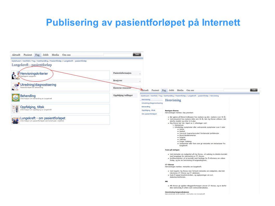 Publisering av pasientforløpet på Internett