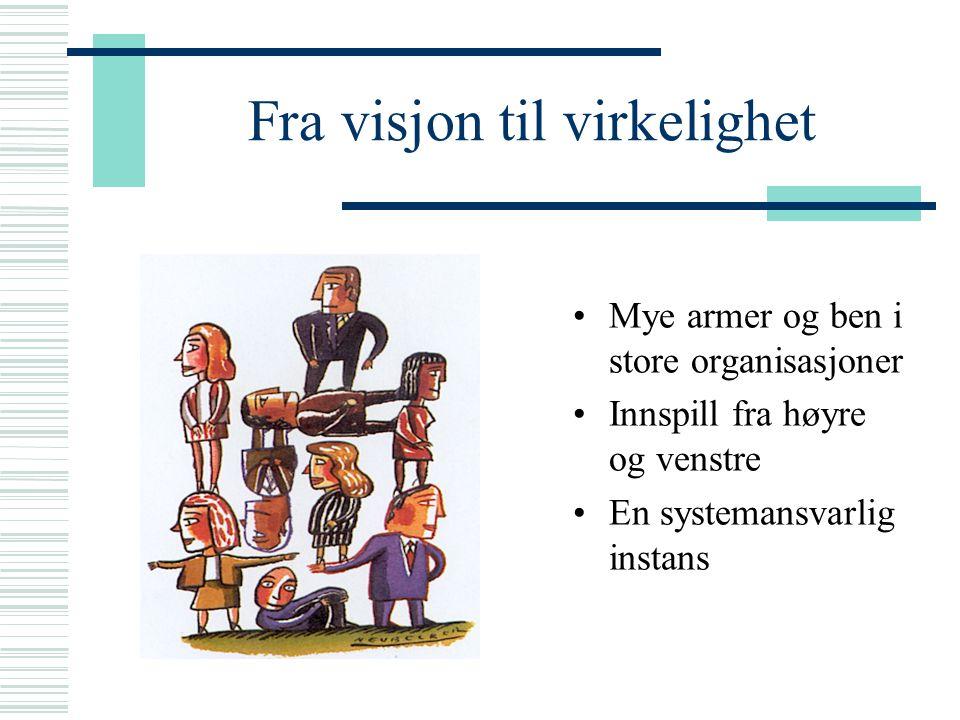 Fra visjon til virkelighet Mye armer og ben i store organisasjoner Innspill fra høyre og venstre En systemansvarlig instans