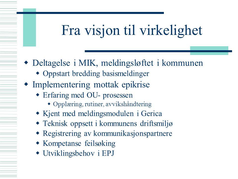 Fra visjon til virkelighet  Deltagelse i MIK, meldingsløftet i kommunen  Oppstart bredding basismeldinger  Implementering mottak epikrise  Erfarin