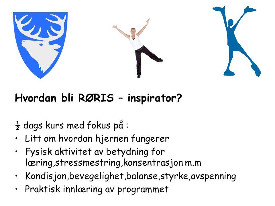 Hvordan bli RØRIS – inspirator.