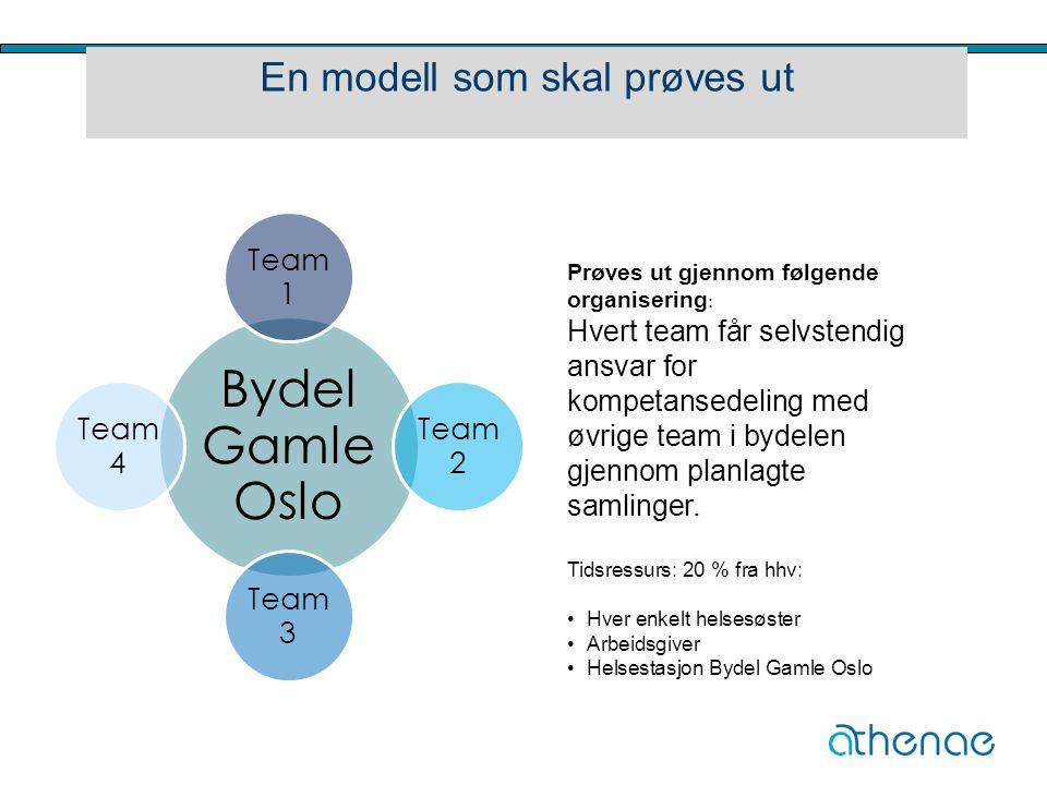 En modell som skal prøves ut Bydel Gamle Oslo Team 1 Team 2 Team 3 Team 4 Prøves ut gjennom følgende organisering : Hvert team får selvstendig ansvar