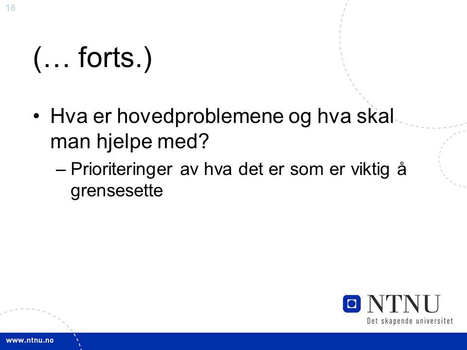 16 (… forts.) Hva er hovedproblemene og hva skal man hjelpe med? –Prioriteringer av hva det er som er viktig å grensesette