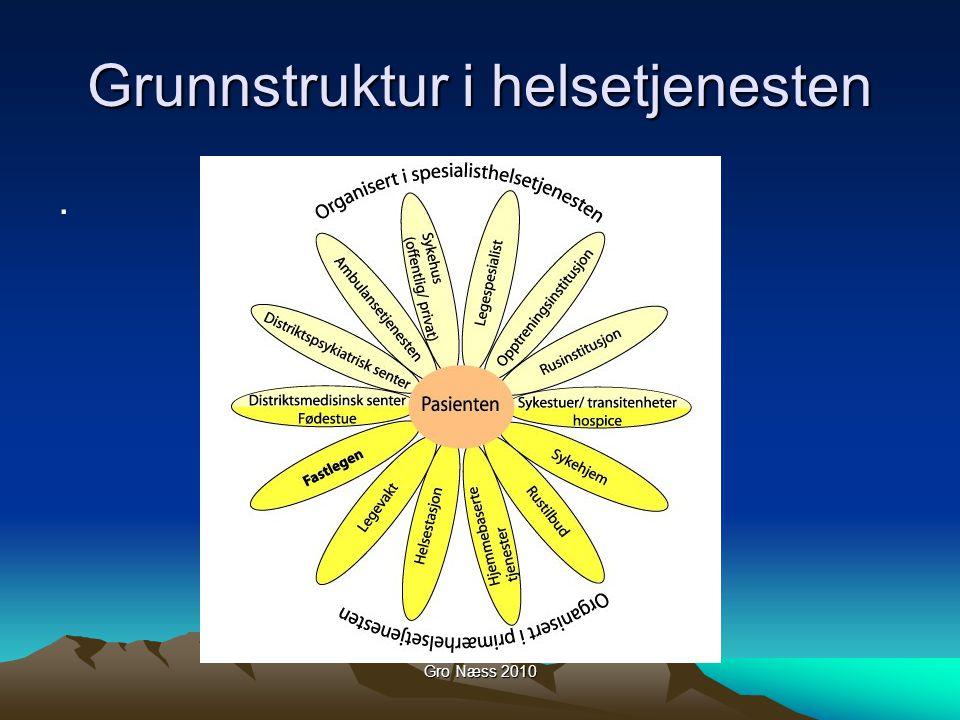 Gro Næss 2010 Grunnstruktur i helsetjenesten.