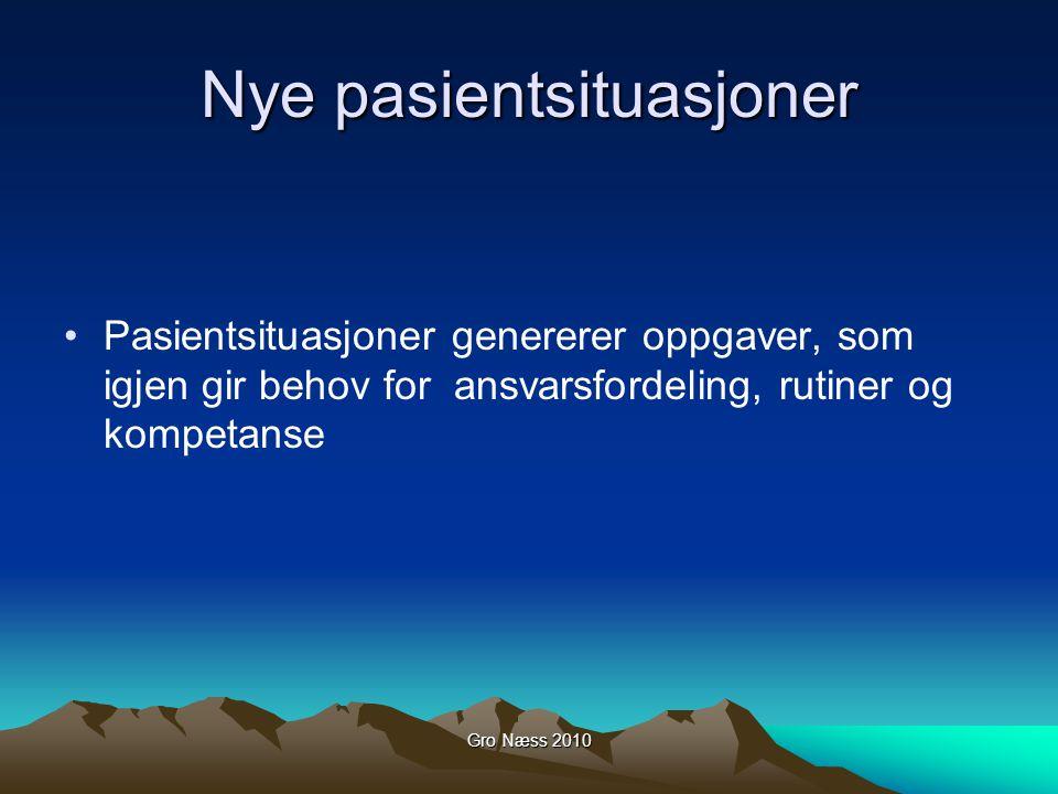 Gro Næss 2010 En ny rolle for sykepleieren.