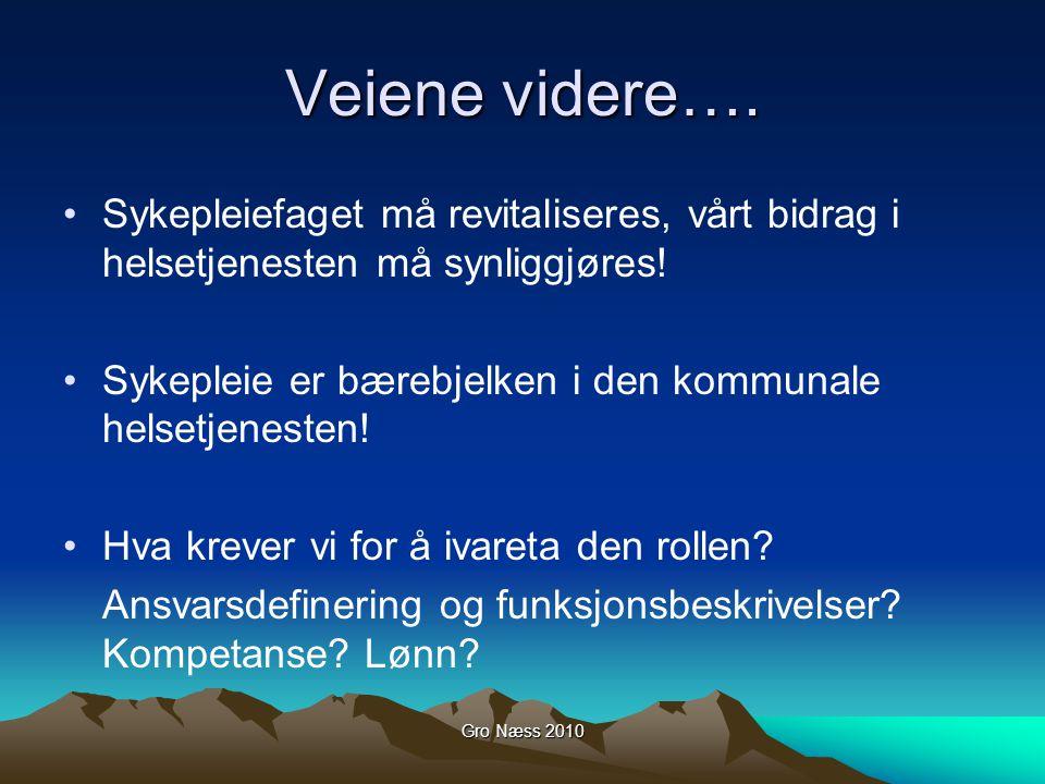 Gro Næss 2010 Veiene videre….