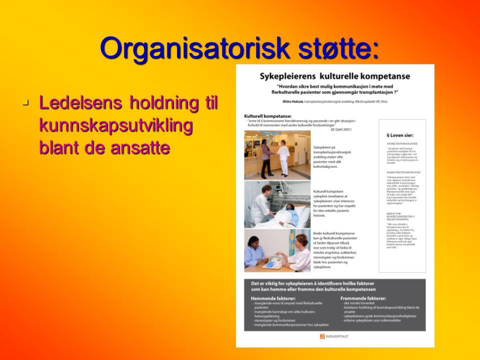 Organisatorisk støtte:  Ledelsens holdning til kunnskapsutvikling blant de ansatte