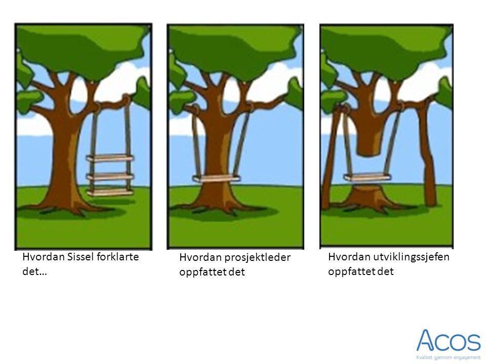 Hvordan Sissel forklarte det… Hvordan prosjektleder oppfattet det Hvordan utviklingssjefen oppfattet det
