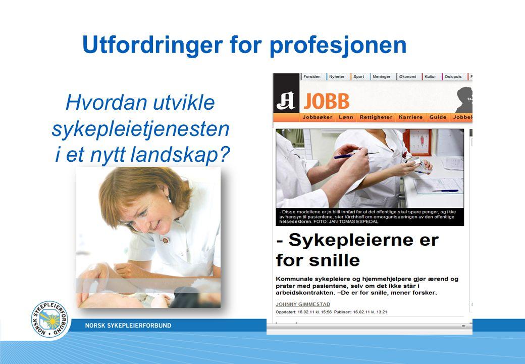 Utfordringer for profesjonen Hvordan utvikle sykepleietjenesten i et nytt landskap?