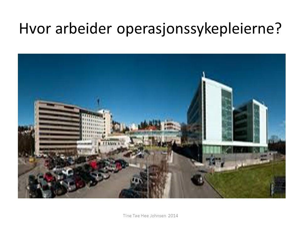 Hvor arbeider operasjonssykepleierne? Tine Tae Hee Johnsen 2014