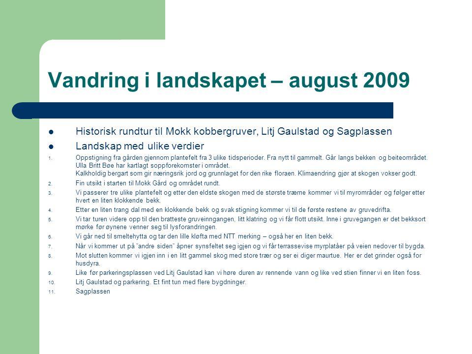 Vandring i landskapet – august 2009 Historisk rundtur til Mokk kobbergruver, Litj Gaulstad og Sagplassen Landskap med ulike verdier 1. Oppstigning fra