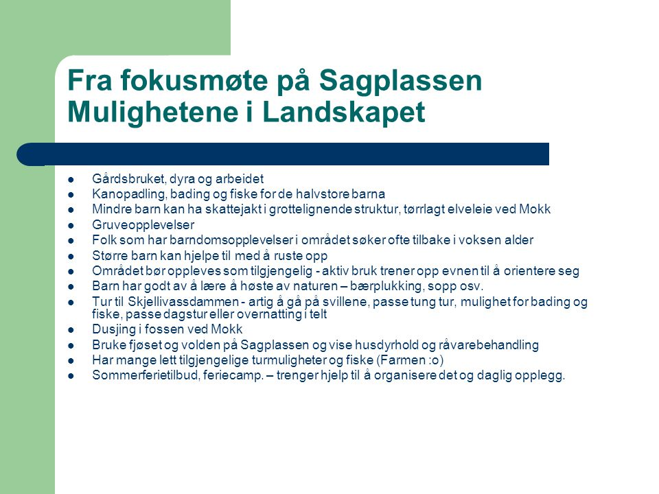 Fra fokusmøte på Sagplassen Mulighetene i Landskapet Gårdsbruket, dyra og arbeidet Kanopadling, bading og fiske for de halvstore barna Mindre barn kan
