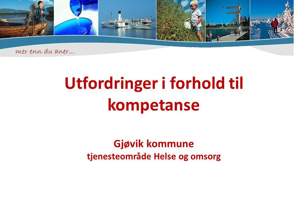 Utfordringer i forhold til kompetanse Gjøvik kommune tjenesteområde Helse og omsorg