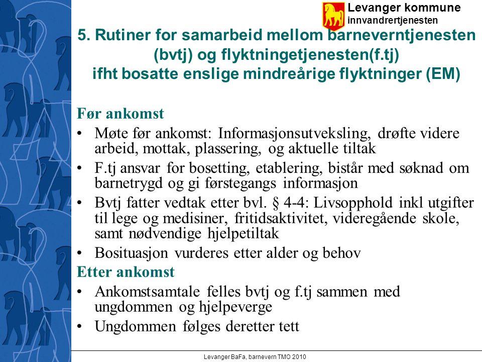 Levanger kommune innvandrertjenesten Levanger BaFa, barnevern TMO 2010 5.