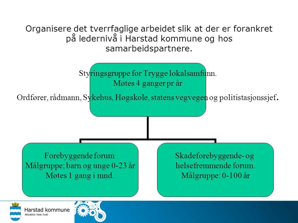 Organisere det tverrfaglige arbeidet slik at der er forankret på ledernivå i Harstad kommune og hos samarbeidspartnere. Styringsgruppe for Trygge loka
