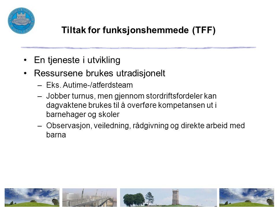 Tiltak for funksjonshemmede (TFF) En tjeneste i utvikling Ressursene brukes utradisjonelt –Eks. Autime-/atferdsteam –Jobber turnus, men gjennom stordr